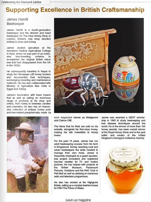 Luxurious Magazine-artical