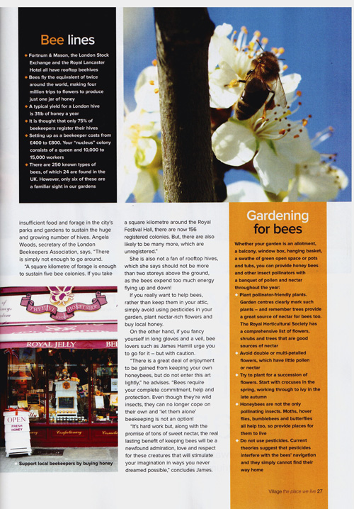 Village Magazine- Artical pg4