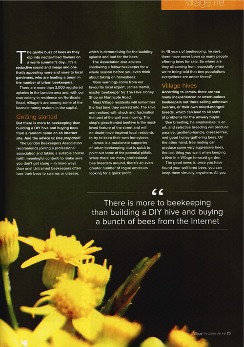Village Magazine- Artical pg2